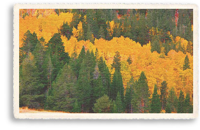Golden aspens and ponderosa pines cover the Sandia Mountains at the base of New Mexico's Turquoise Trail